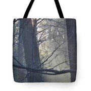 Early Morning Rays Tote Bag