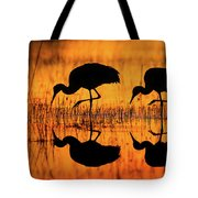 Early Morning Sandhill Cranes Tote Bag