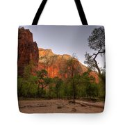 Early Morning Solitude At Zion  Tote Bag