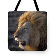 Early Morning Warning Tote Bag