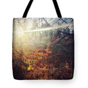 Early Morning Winter Sun Tote Bag
