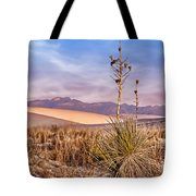 Early Morning Yucca - White Sands - New Mexico Tote Bag