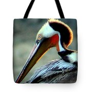 Early Riser Photograph Tote Bag