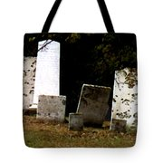 Early Settlers Tote Bag