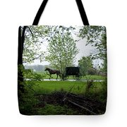 Early Spring Buggy Tote Bag