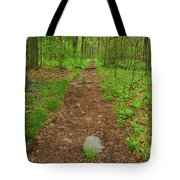 Early Spring In Maryland Tote Bag