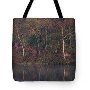 Early Spring Lake Shore Tote Bag