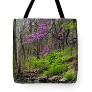 Early Spring On Mill Creek 2 Tote Bag