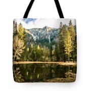 Early Spring Reflections Tote Bag