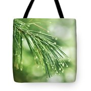 Early Spring Woodland Tote Bag