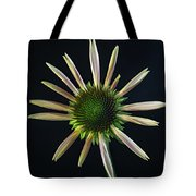 Early Stage Of Cone Flower Bloom Tote Bag