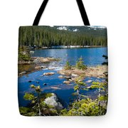 Early Summer At Finch Lake Tote Bag