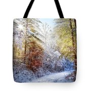 Early Winter's Walk Tote Bag