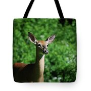 Ears Tote Bag