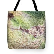 Earth Art 9492 Tote Bag