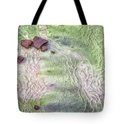 Earth Art 9493 Tote Bag