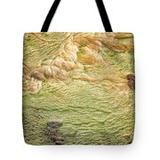 Earth Art 9509 Tote Bag