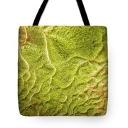 Earth Art 9516 Tote Bag