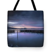 Earth Day Sunset Unsigned Tote Bag
