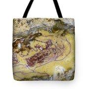Earth Portrait 007 Tote Bag