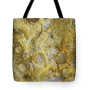 Earth Portrait 013 Tote Bag
