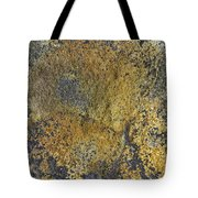 Earth Portrait 014 Tote Bag