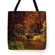 Earth Tones In A Illinois Woods Tote Bag