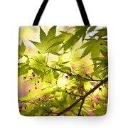 Earth Walk Tote Bag