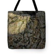 Earth's Pedestal Tote Bag