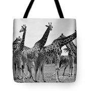 East Africa: Giraffe Tote Bag