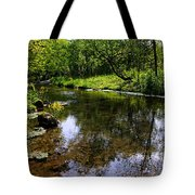 East Beaver Creek Tote Bag