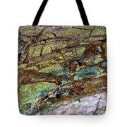East Jordan 22 Tote Bag