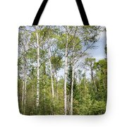 East Jordan 9 Tote Bag