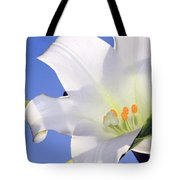 Easter Lily Back Lit By The Sun  Tote Bag