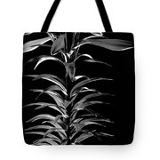 Easter Lily One Tote Bag