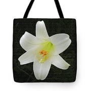 Easter Lily With Black Background Tote Bag