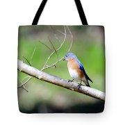 Eastern Bluebird Tote Bag by George Randy Bass