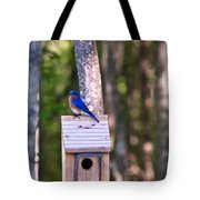 Eastern Bluebird Perched On Birdhouse 2 Tote Bag