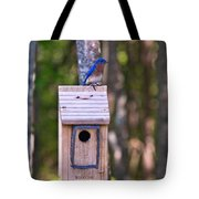 Eastern Bluebird Perched On Birdhouse 3 Tote Bag