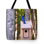 Eastern Bluebird Perched On Birdhouse Tote Bag