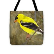 Eastern Goldfinch Tote Bag