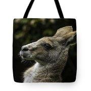 Eastern Grey Kangaroo Tote Bag