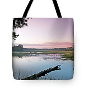 Eastern Morning Tote Bag