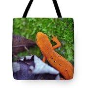 Eastern Newt Tote Bag