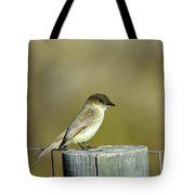Eastern Phoebe At Falcon State Park Of Texas Tote Bag