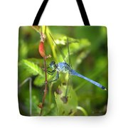 Eastern Pondhawk Dragonfly Tote Bag