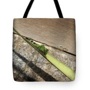 Eastern Pondhawk On A Leaf Tote Bag