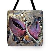 Eastern Skunk Cabbage Spathes - Symplocarpus Foetidus Tote Bag