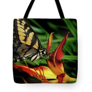 Eastern Tiger Swallow Tail Butterfly Tote Bag