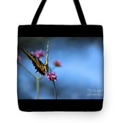 Eastern Tiger Swallowtail And Blue Sky Tote Bag